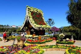 festival hoa da lat