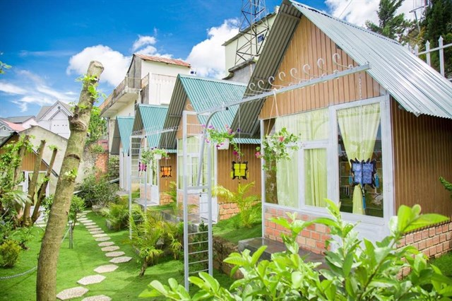 windy-hill-homestay-da-lat